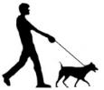 dogwalkingsilloette